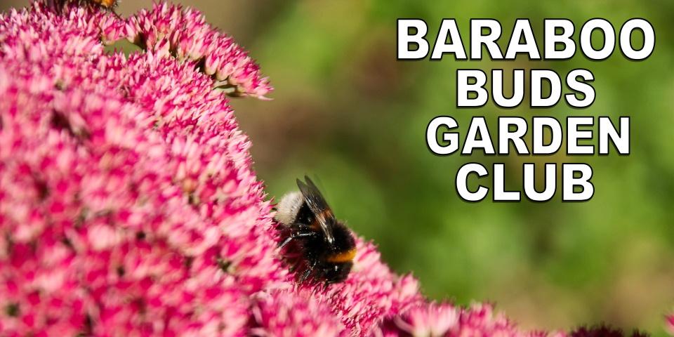 slide advertising Baraboo Buds Garden Club meeting 10-12-21